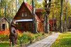 Сосновка, курорт-санаторий (Новосибирск)